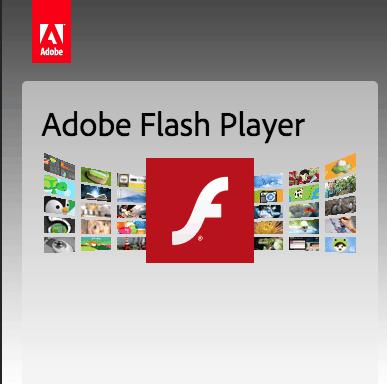 Wieder einmal der Adobe Flash Player!
